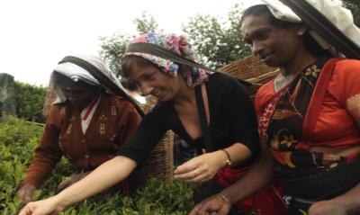 Teehaus_Ronnefeldt_Sri Lanka_Tee pflücken