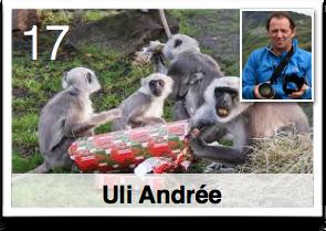 Es war einmal ... Plötzlich Weihnachten!... Geschenkefinder-Adventskalender Uli Andreé