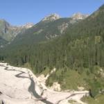 263104211-schwarzwassertal-lechtal-flussbett-gebirgswald